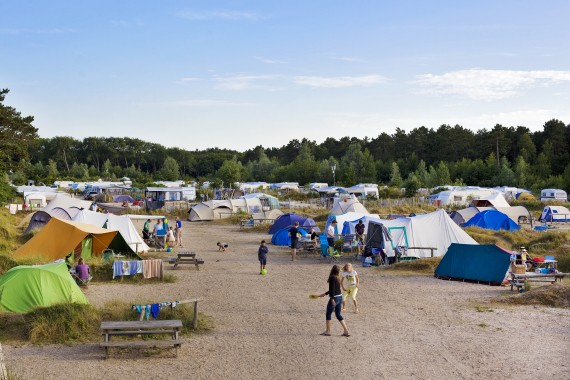 Bakkum Tentplaats